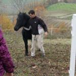 Diego e il cavallo Morgana